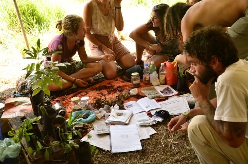Uma rica troca de sementes rolou no último dia do encontro, com direito a sementes de diversas regiões do Brasil, inclusive de outros países
