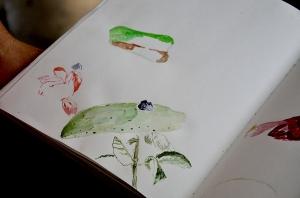 A aquarela de Marcela Arantes