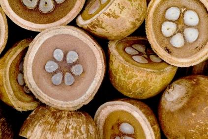 Enquanto o silicone atua na cutícula do pelo, que é sua porção mais externa, o óleo de coco de babaçu promove uma nutrição interna, mais profunda.