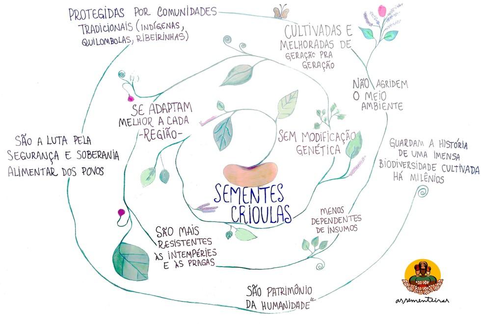 Criação e desenho: Naélia Forato e Luciana Teruel